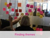 NSW NGO Finding themes